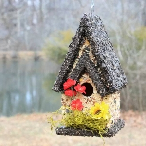 edible-bird-houses (40)