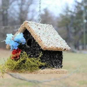 edible-bird-houses (44)