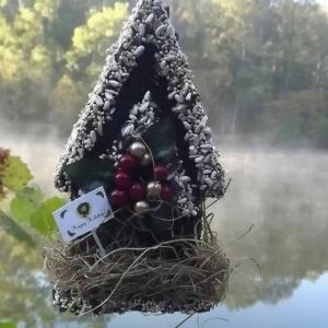 edible-bird-houses (18)