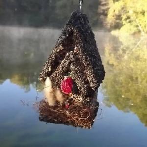 edible-bird-houses (22)