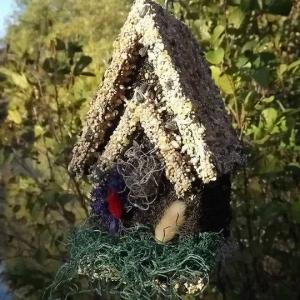 edible-bird-houses (23)