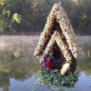 edible-bird-houses (24)