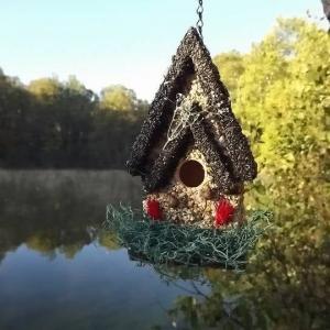 edible-bird-houses (27)
