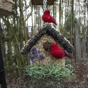 edible-bird-houses (3)
