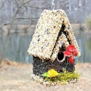 edible-bird-houses (38)