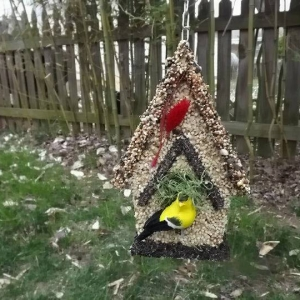 edible-bird-houses (4)