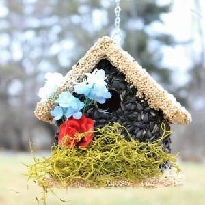 edible-bird-houses (42)