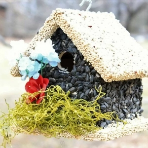 edible-bird-houses (43)