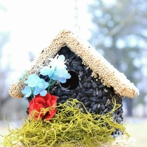 edible-bird-houses (45)