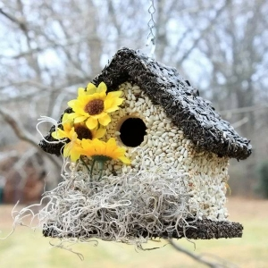 edible-bird-houses (48)