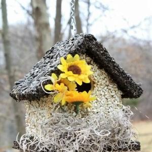 edible-bird-houses (49)