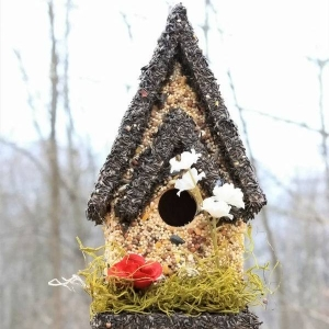 edible-bird-houses (51)