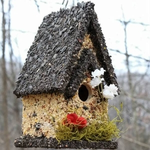 edible-bird-houses (52)