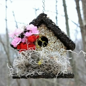 edible-bird-houses (55)