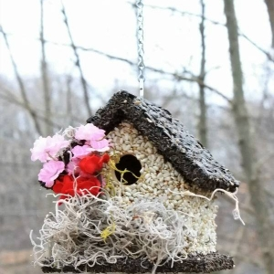 edible-bird-houses (56)