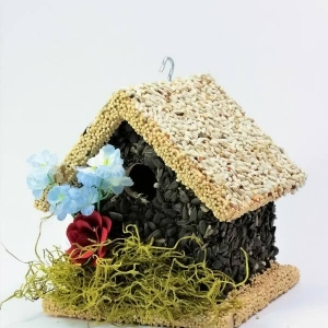 edible-bird-houses (58)