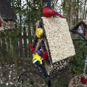 edible-bird-houses (6)