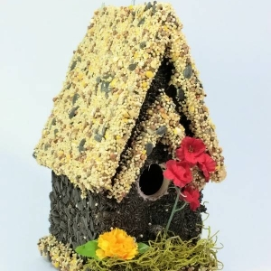 edible-bird-houses (64)