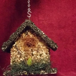 edible-bird-houses (7)
