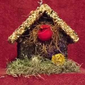 edible-bird-houses (8)