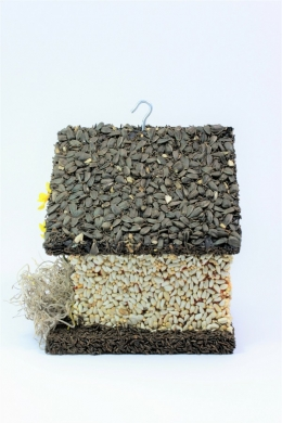 types-of-seeds (3)